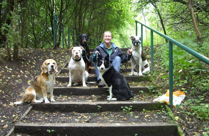 Pet Sitting Services - Failsworth